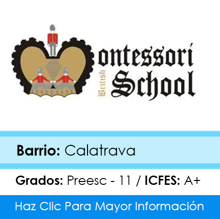 Colegio Montessori British School